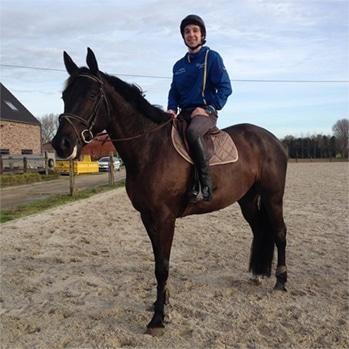 P. Mathieu cheval